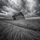 Windswept by IanMcGregor