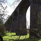 Hambrook Viaduct by Kirsty Harper
