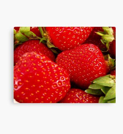 Strawberries! Bolzano/Bozen, Italy Canvas Print
