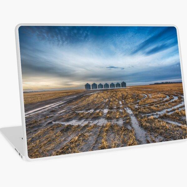 Seven Guardians Laptop Skin