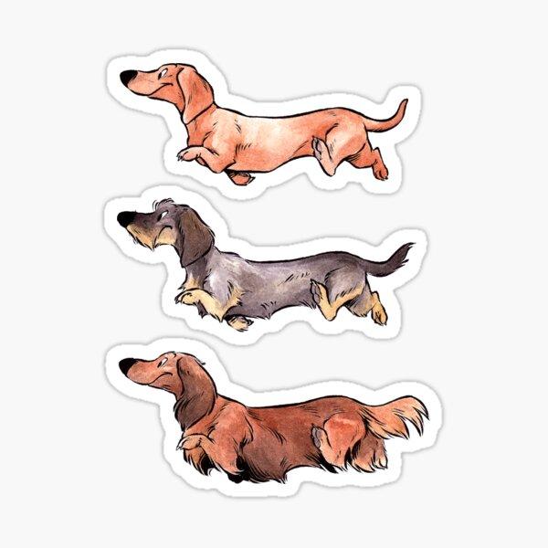 Teckels (color) Sticker