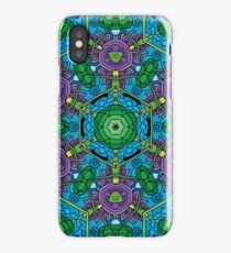 Psychedelic LSD Trip Ornament 0010 iPhone Case/Skin