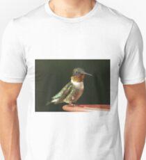 Male Hummingbird T-Shirt