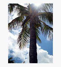 Tropical Get Away Photographic Print