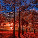 Autumn Perfection by IanMcGregor