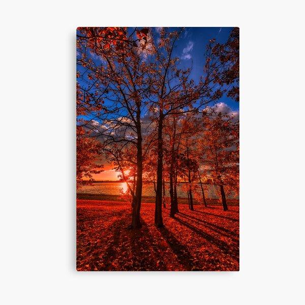Autumn Perfection Canvas Print