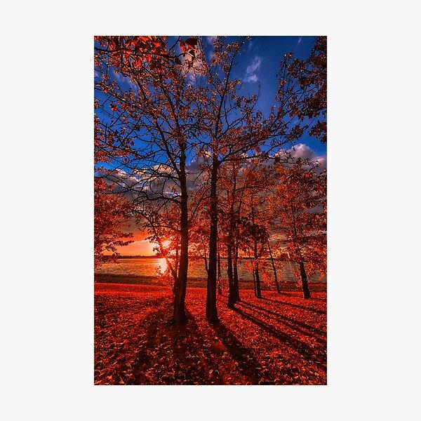 Autumn Perfection Photographic Print