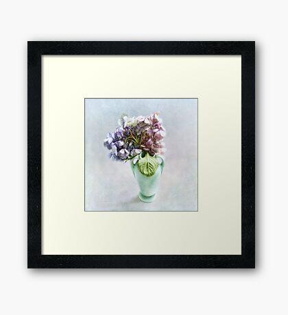 Endless Summer Hydrangea Still Life #2 Framed Print