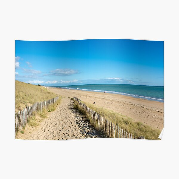 Path leading to sandy beach Poster