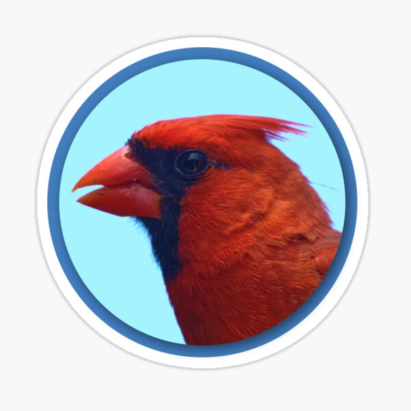Cardinal Portrait Sticker
