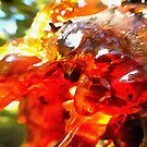 Apricot Resin Abstract by taiche