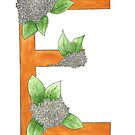 E is for Elderflower by Charis Woodrow