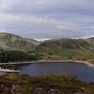 Mardale Head by mikebov