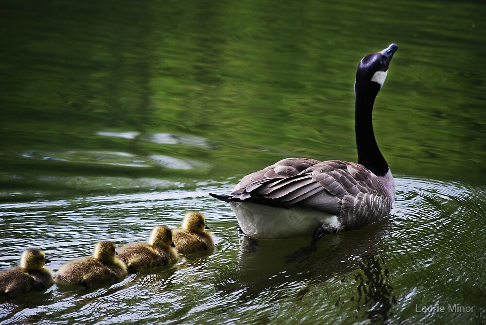 """""""Full Speed Ahead, Kids!!"""" by Laurie Minor"""