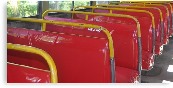 Red Seats by Margaret Stevens