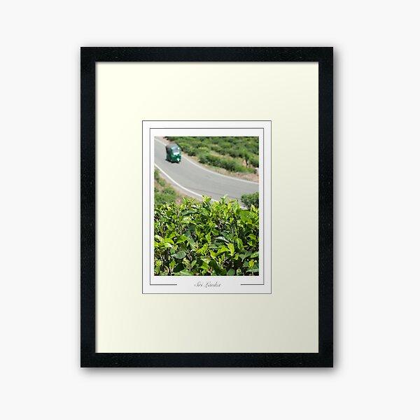 Sri Lanka Tea plantations in the neighbourhood of Ella Framed Art Print