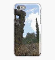 Natural Sculpture iPhone Case/Skin