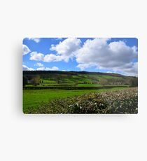 East Witton Metal Print