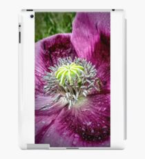 Insect on Flower iPad Case/Skin