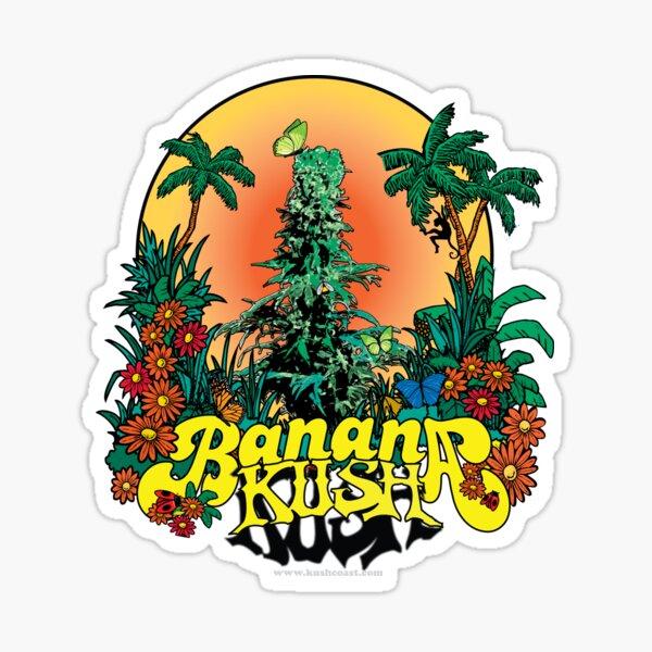 Banana Kush Cannabis Strain Art Sticker