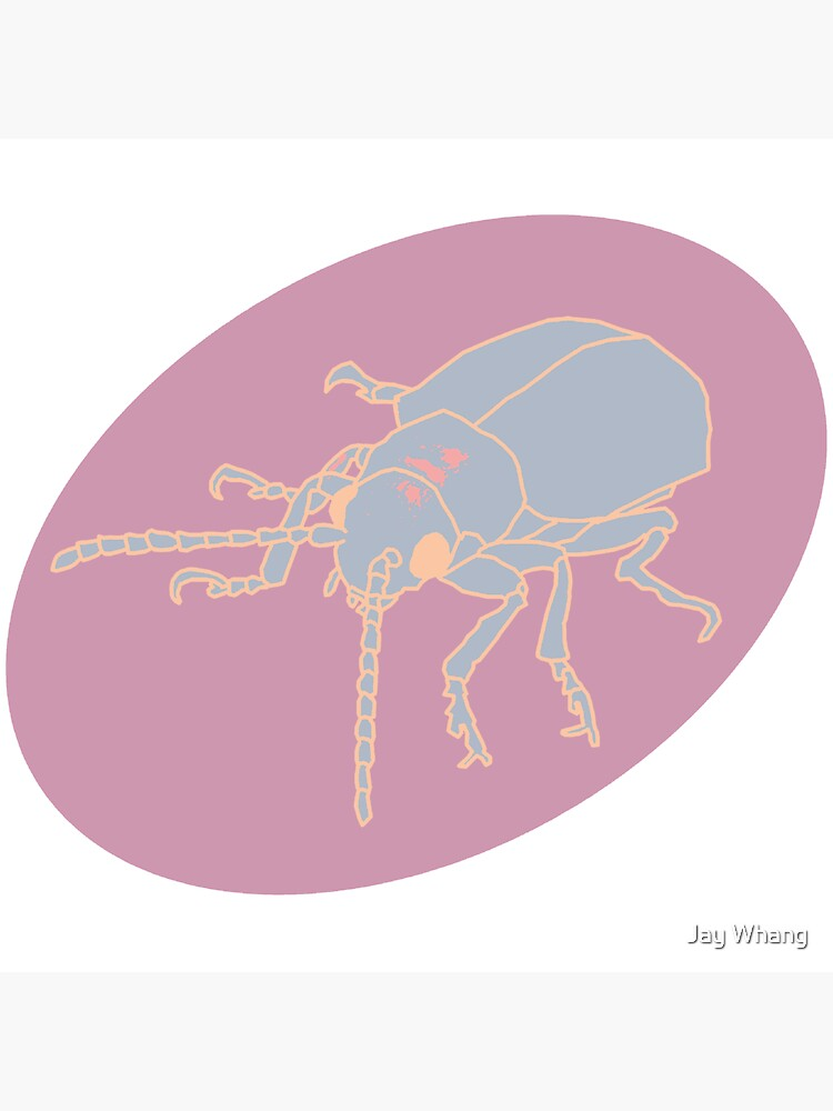 Dessert Insect with Shadow (Pastel 5) by Jay-Whang-Arts