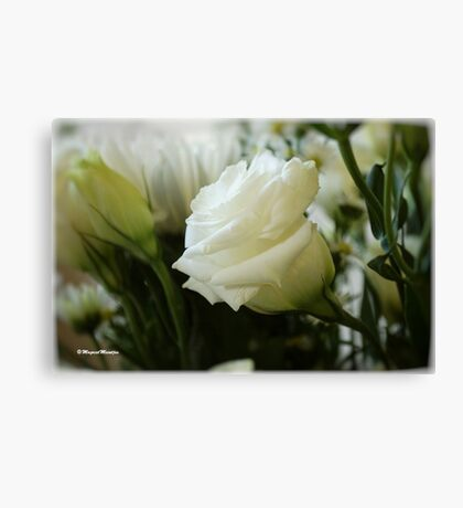 PERFECT IN WHITE Canvas Print
