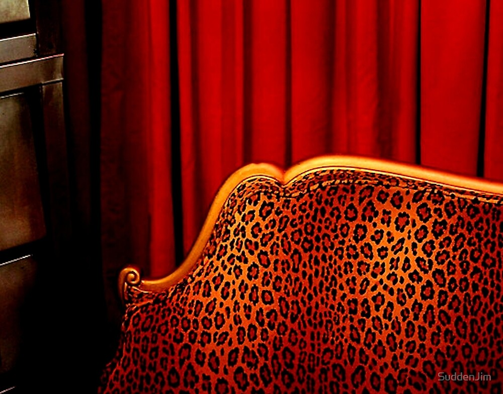 Leopard Lounge by SuddenJim