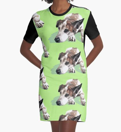 Jenny Graphic T-Shirt Dress