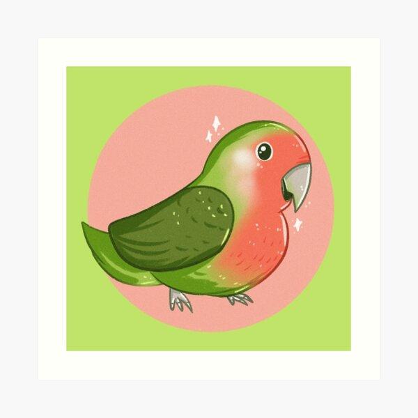 Lovebird lea Lea Lovebird