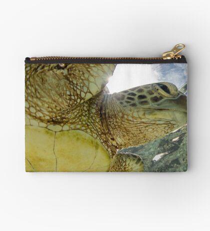 Hopeful turtle - print Studio Pouch