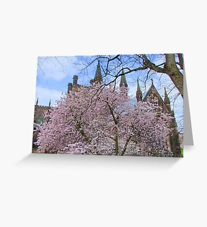 Spring Blossom in Chester Cathedral Garden, England Greeting Card