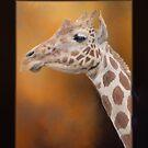 Giraffe by KathleenRinker