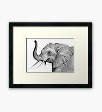 Grey Bull Framed Print
