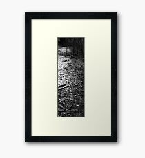 Outdoor Trail Framed Print