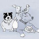 the pack  by Matt Mawson