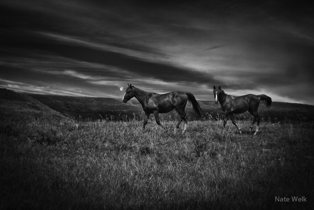 Ranch Land by Nate Welk