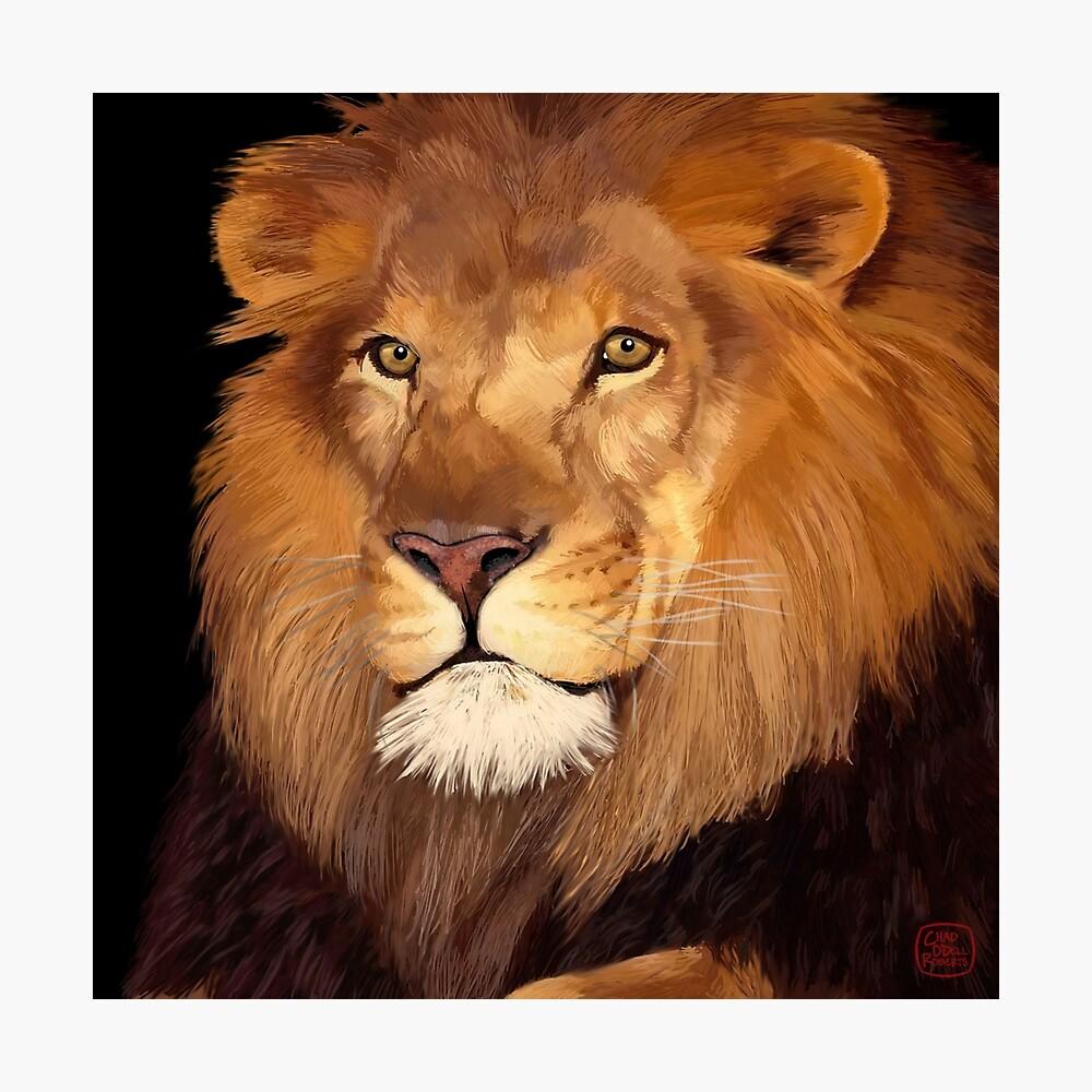 León Lámina fotográfica