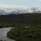 Hoback River, Wyoming, near Jackson Hole by phillipcmiller