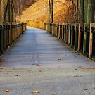 The Wooden Bridge by stormypleasures