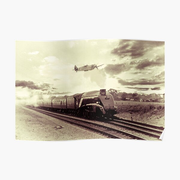 Spitfire and Mallard Poster