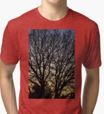 Magestic Tree Closeup Tri-blend T-Shirt