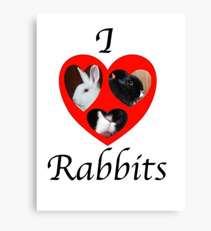 I love Rabbits Canvas Print