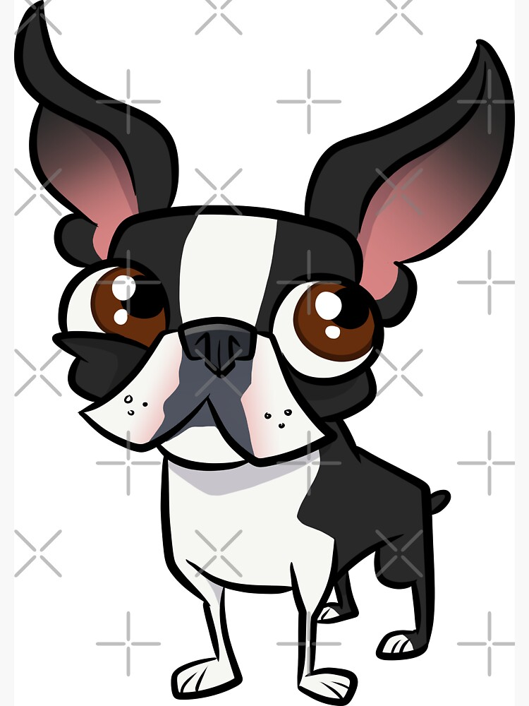 Boston Terrier by binarygod