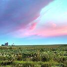 Silos at Sunrise by Kenneth Keifer