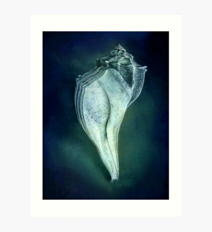 Under the Sea - Shell in Blue Art Print