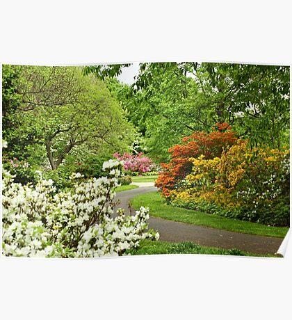 Azalea Gardens - Philadelphia - Pennsylvania - USA Poster