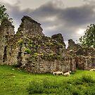 Pendragon Castle by Tom Gomez