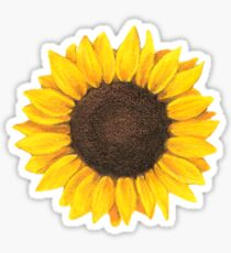 Sunflower drawing Sticker