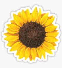Sunflower drawing Sticker