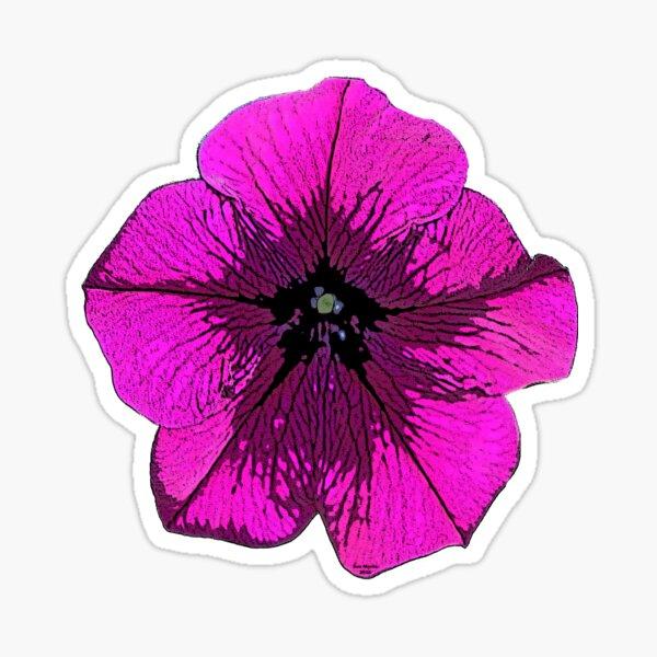Bright Pink Petunia Sticker